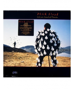 Pink Floyd - Delicate Sound of the Floyd Lp