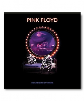 Delicate Sound Of Thunder -  Pink Floyd LP   x 3