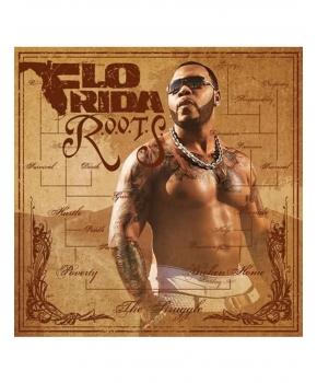 Flo Rida - R.O.O.T.S